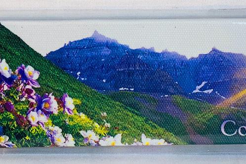 Colorado Canvas Magnet