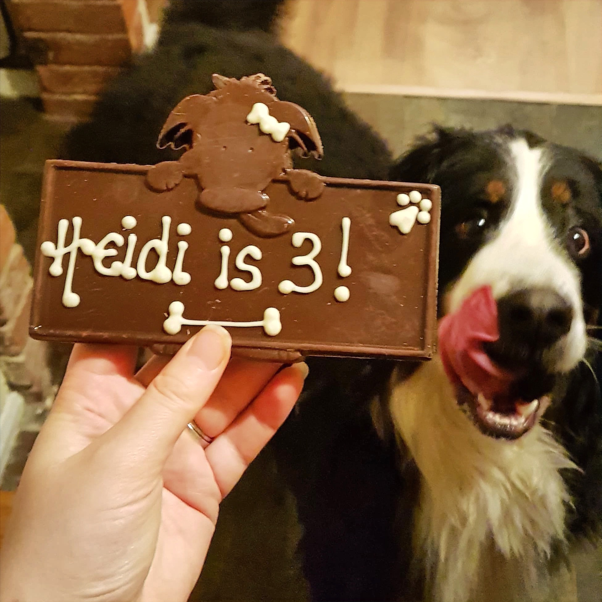 Heidi's Birthday