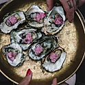 Oysters flambadou From DKK 5.000,- / EUR 650,- per event