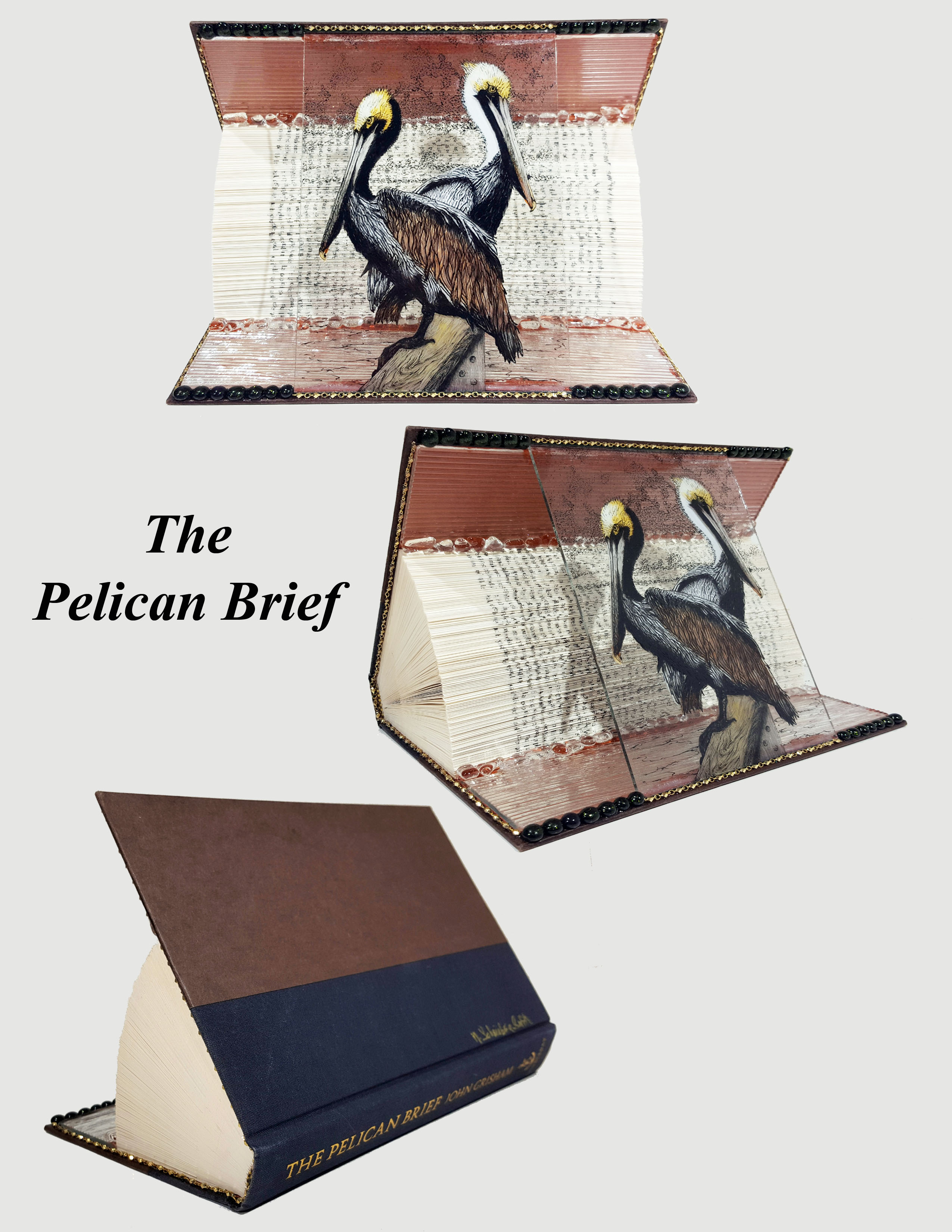 Animal Tales - Pelican Brief - 3 views