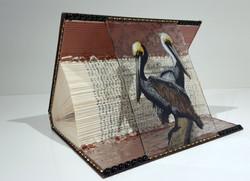 Animal Tales - Pelican Brief- side2