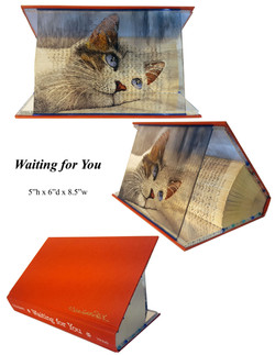 Animal Tales - Waiting For You -  3 view