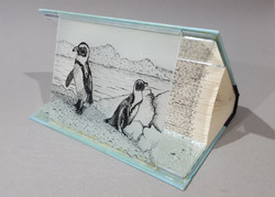 Do Penguins Have Knees