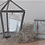Thumbnail: Glass Terrarium