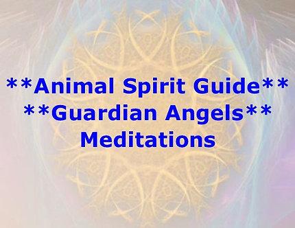 Animal Spirit Guide Meditation DL