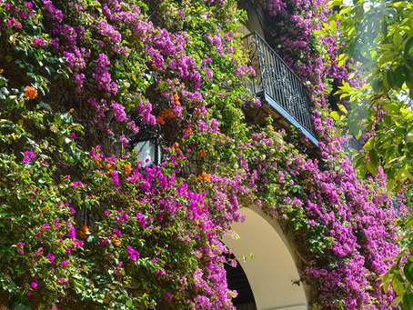 Spring and Easter in Marbella