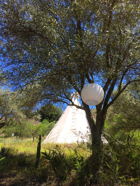 One of our large teepees