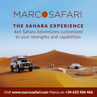 Marco Safari.jpg