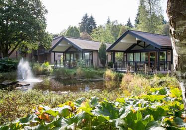 Lodges set in beautiful gruunds