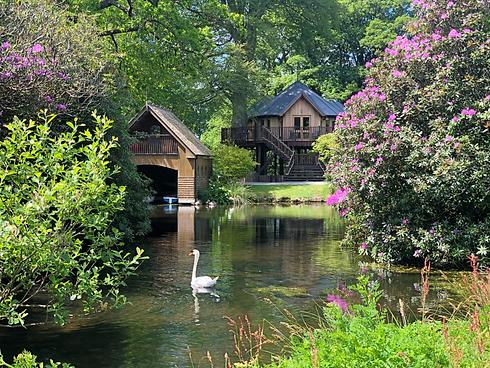 Whitbarrow Lodge with lake and swan