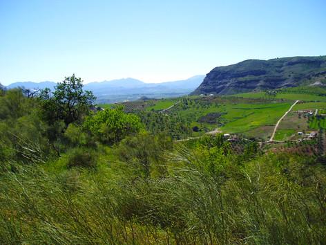 Superb countryside views