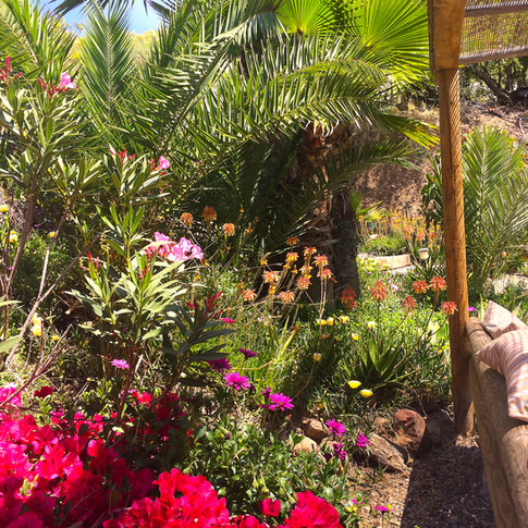 Stunnng gardens