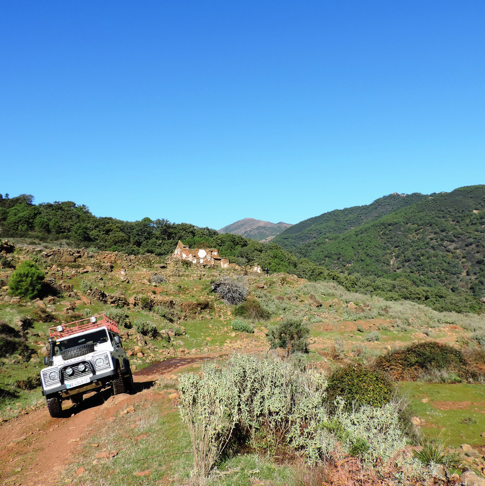 Defender in the national park