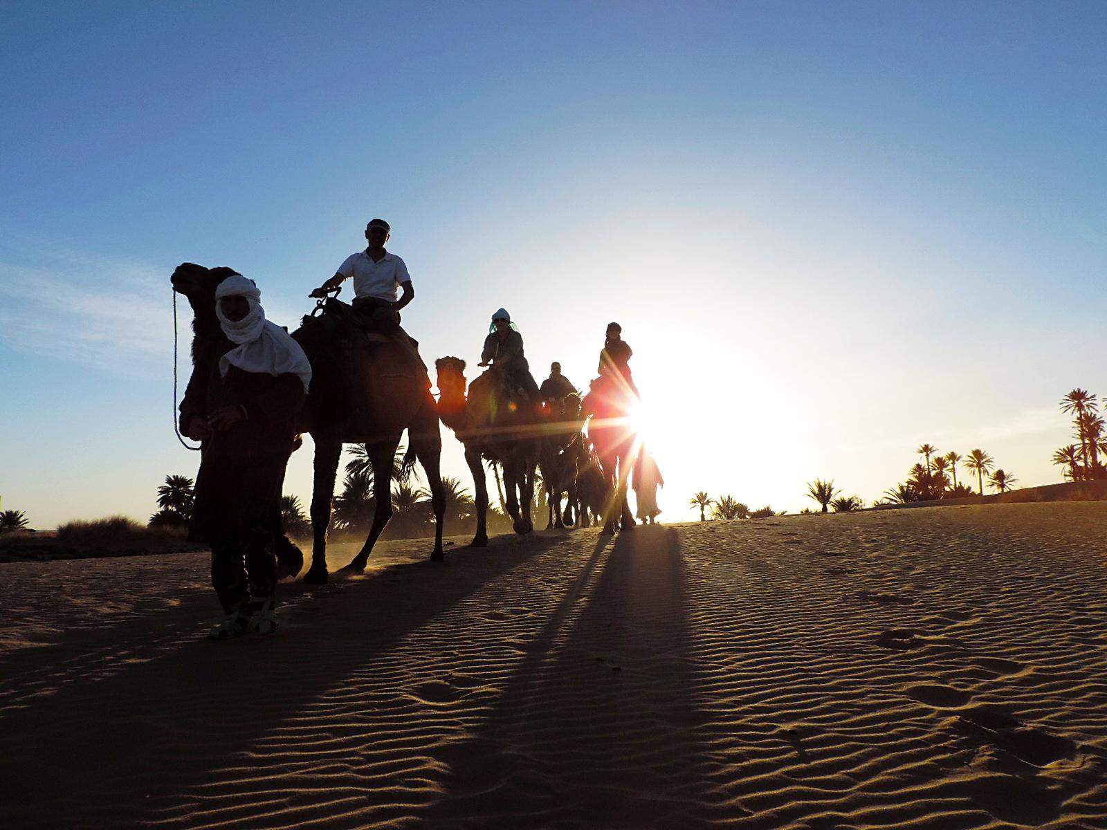 Marco safari camel ride sahara