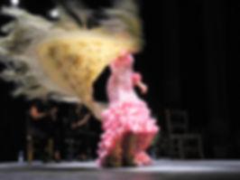 Flamenco_saucejo.jpg