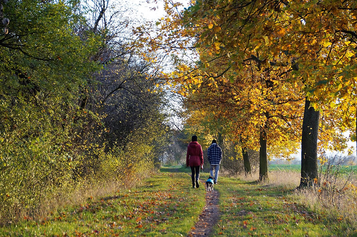 Couple walking their dog on country path in autumn