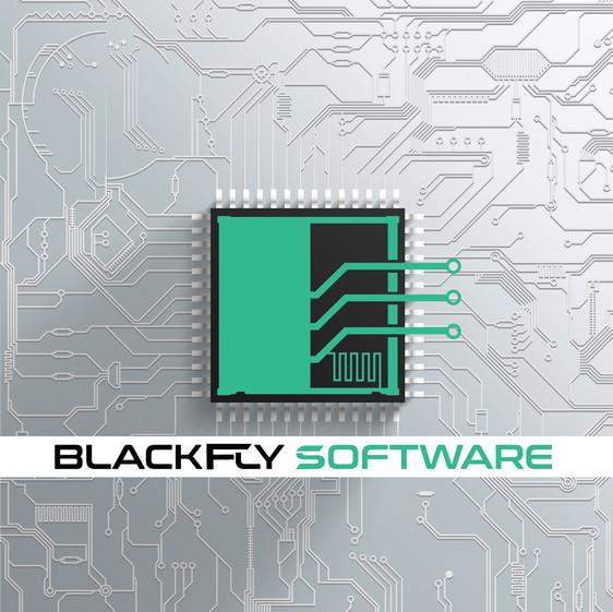 Blackfly Software