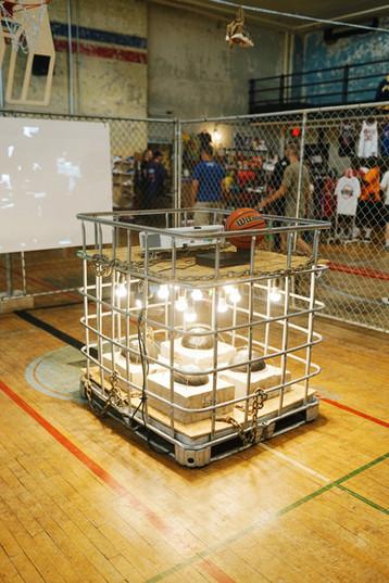 cage 1 5000.jpg