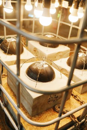 cage 2 5000.jpg