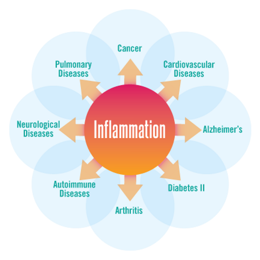 Inflammation_circle_01.png