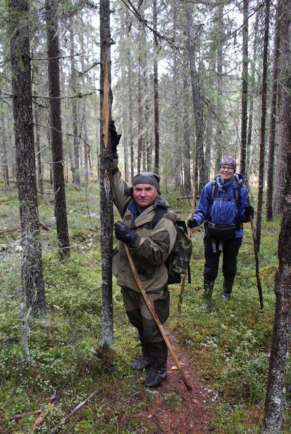 В сказочном лесу 1