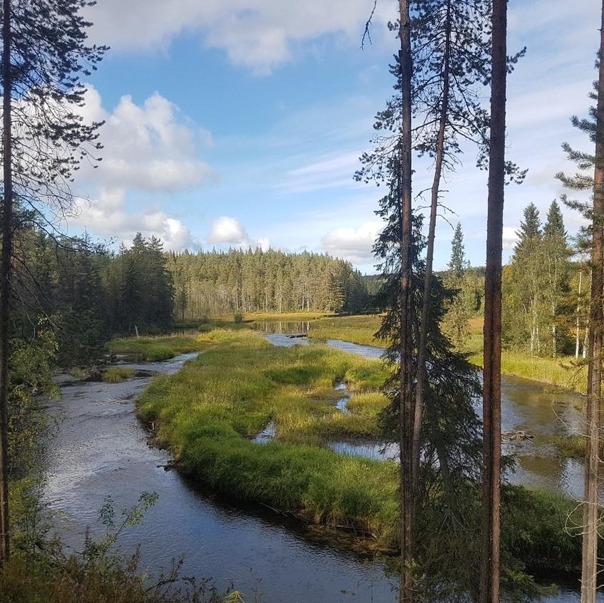 Река каменная1