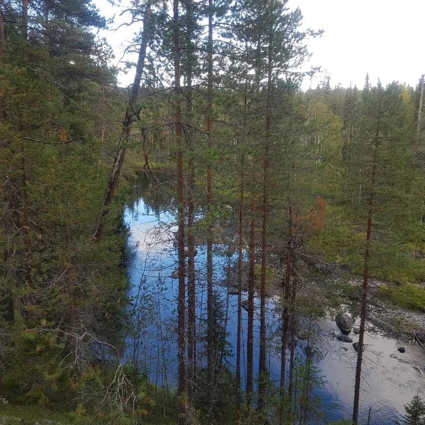 Река каменная3