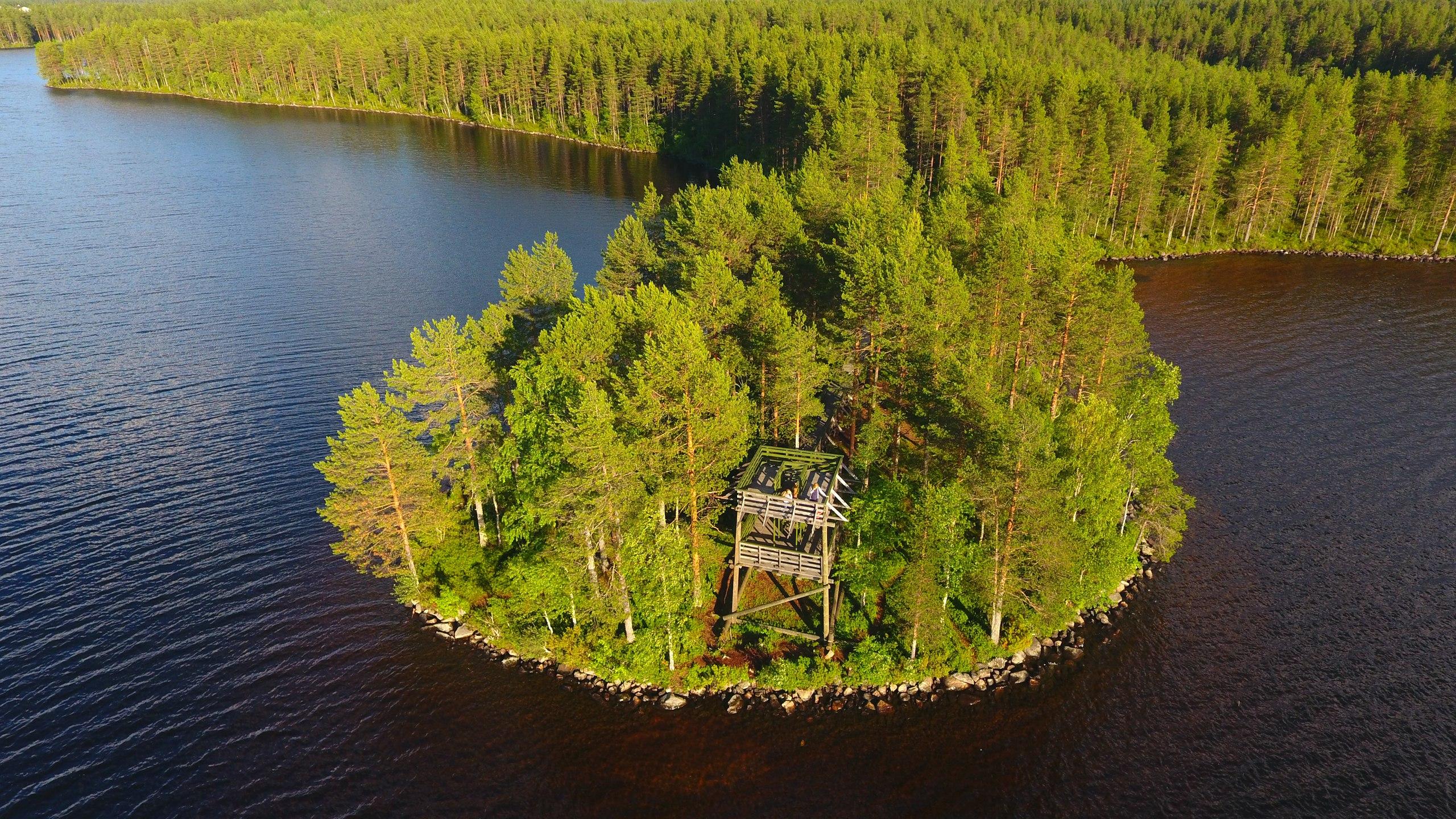 Вид с озера на вышку