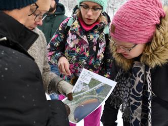Сотрудничество по городским паркам