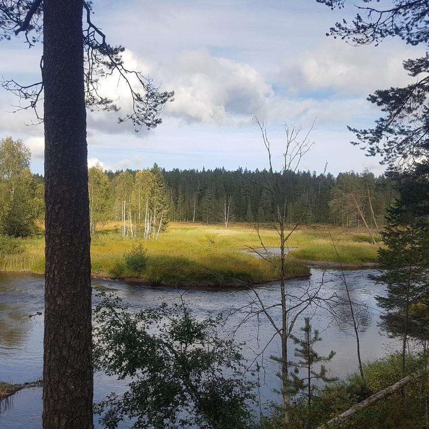 Река каменная2
