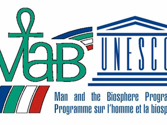 В Костомукше создан биосферный резерват ЮНЕСКО.