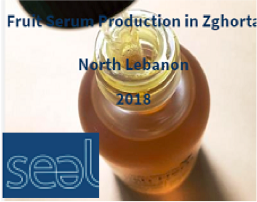 SOCIAL AND ECONOMIC ACTION FOR LEBANON (SEAL)