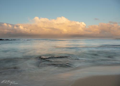 Ocean brush1_wm_web.jpg