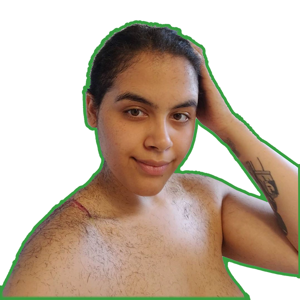 MermaidPicture.png