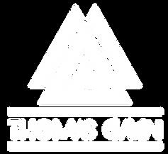 djthomasgavin new logo white.png