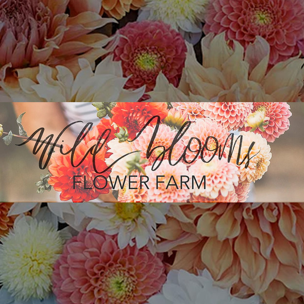 WILD BLOOM FARMS