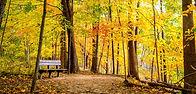 Fall Hiking Relax.jpg