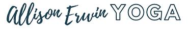 Bar Logo in Steel.png