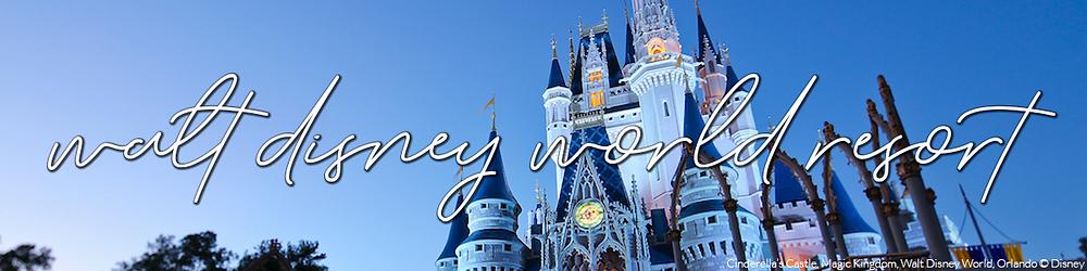 Walt Disney World Update Banner