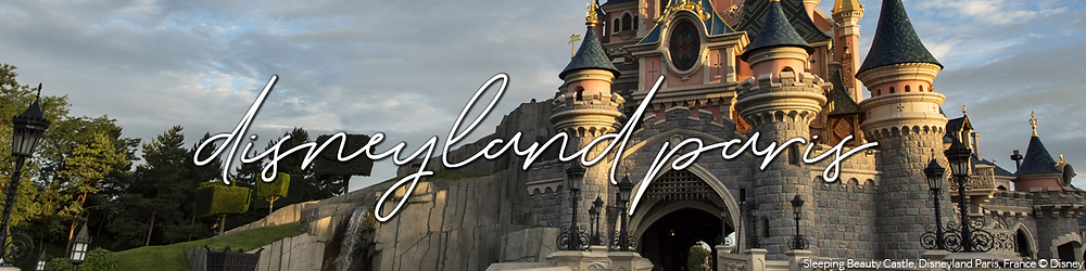 Disneyland Paris Update Banner
