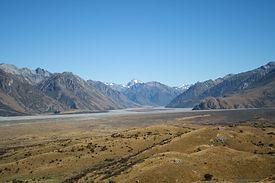 NZ 1290.JPG.jpg
