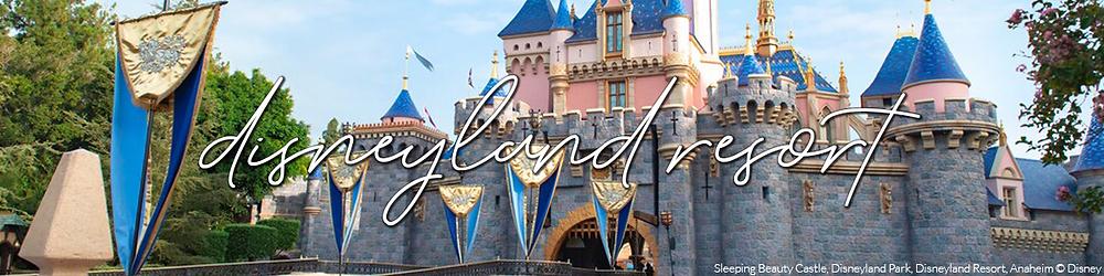 Disneyland Resort Update Banner