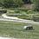 Thumbnail: Alko Robolinho 2000W Robotic Mower