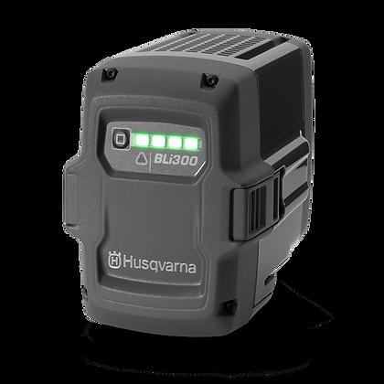 Husqvarna Bli 300  Batteries
