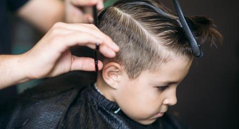 Coleman's Kid Cut
