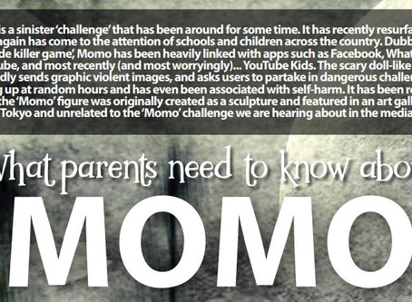 The Momo Challenge - Online Safety - Important Information For Parents