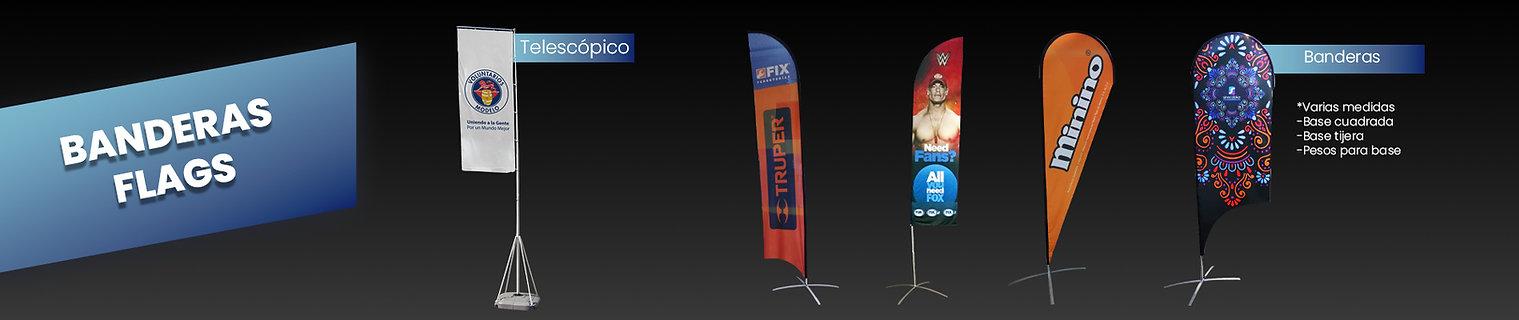 banner_flags.jpg