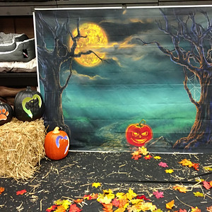 Halloween Photos @ Pet Valu
