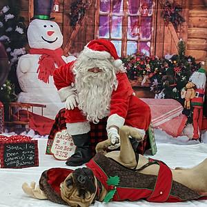 Santa @ PetValu