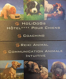 Pet-services.fr_Holidogs.jpg